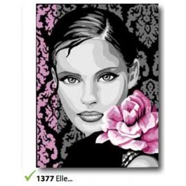 Canovaccio Elle... art. 153.1377