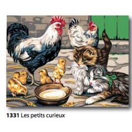 Canovaccio La petits curieux art. 153.1331