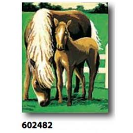 Canovaccio art. 766.602482