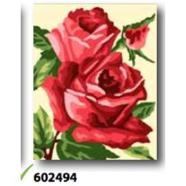 Canovaccio art. 766.602494