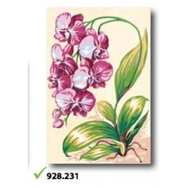 Canvas art. 928.231