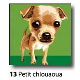 Kit Canovaccio Petit chiouaoua art. 9223.13