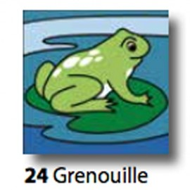 Kit Canovaccio Grenouille art. 7054.24