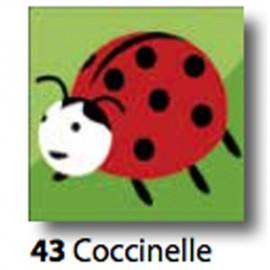 Kit Canovaccio Coccinelle art. 7054.43