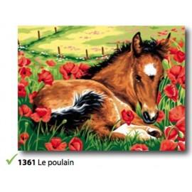 Canovaccio Le poulain art. 153.1361