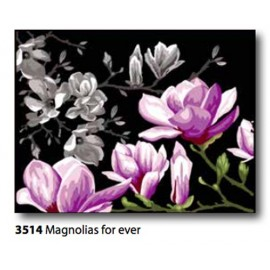 Canvas Magnolias for ever art.133.3514