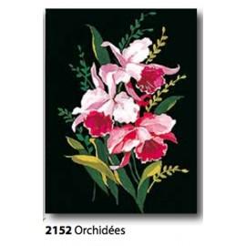 Tissu Orchidées art. 72.2152