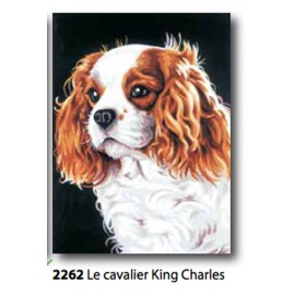 Cloth The cavalier king Charles art. 72.2262