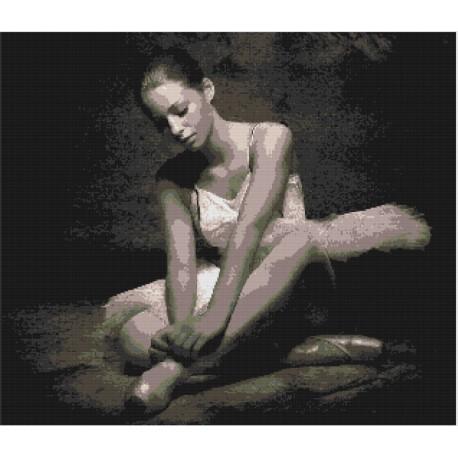 """Schema """"Ballerina 005"""""""