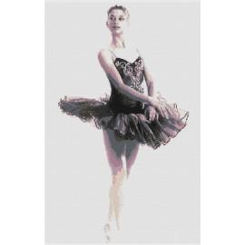 """Schema """"Ballerina 006"""""""